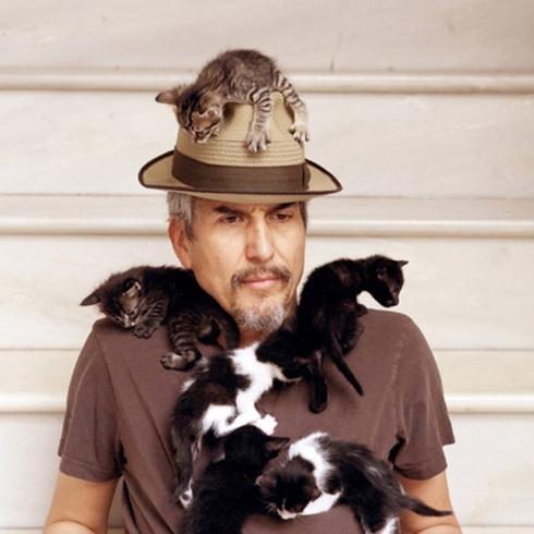 kittycat howe 2010